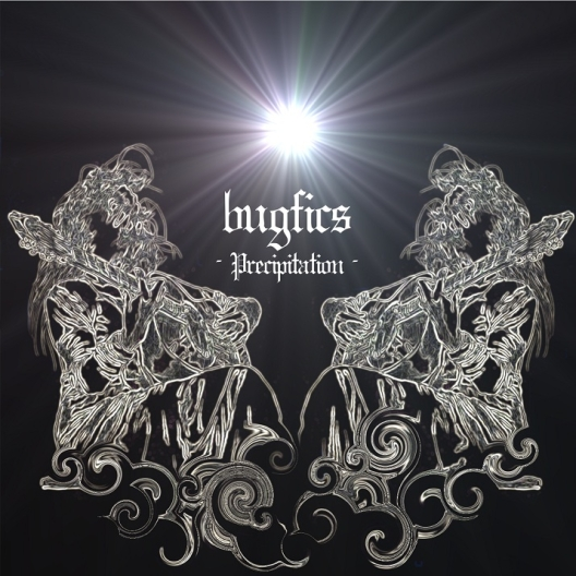 bugfics-Precipitation (1)