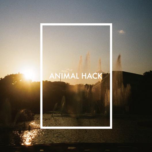 ANIMALSINGLE201706-01