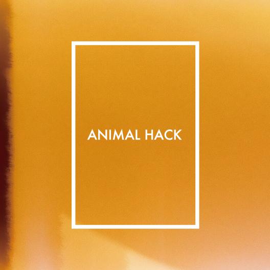 ANIMAL_SINGLE_201708-01